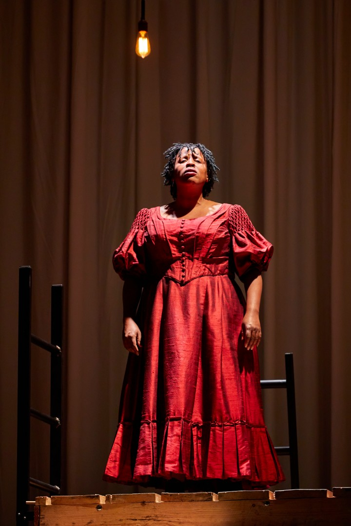 Melanie Marshall (Bertha Mason) NT Jane Eyre Tour 2017. Photo by BrinkhoffMögenburg.JPG